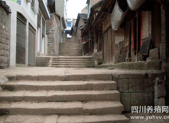 宜宾县白花镇抗日英雄赵一曼上学走过的石梯