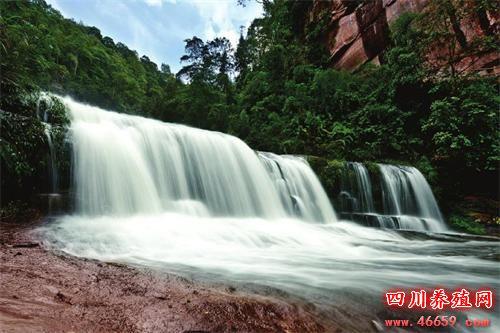 古蔺黄荆老林景区