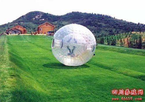 四川省绵竹九龙山风景区