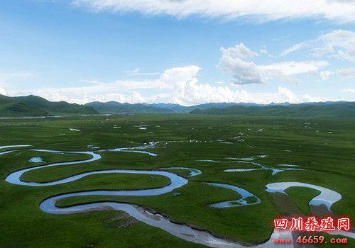 四川阿坝县曼扎塘景区曲河