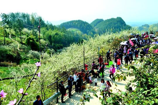 3月28日,开江县讲治镇首届赏花季在该镇高峰村正式启动