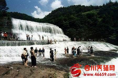 泸州市古蔺县黄荆老林景区