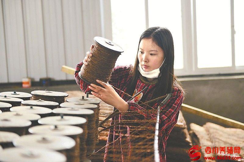 江安县留耕镇四重村王英回乡创业做棕垫 年收入40余万