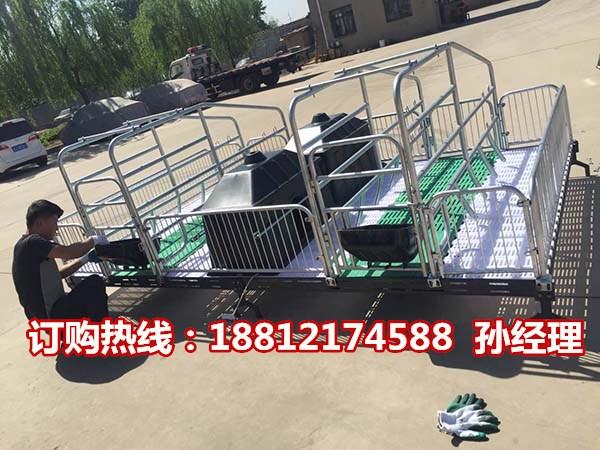 专业生产销售母猪产床销售 猪用分娩栏尺寸齐全