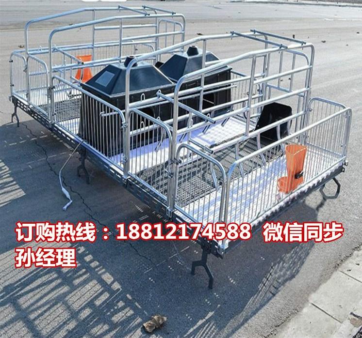 高培产仔栏 猪用分娩栏尺寸 猪产床专业生产销售宏基