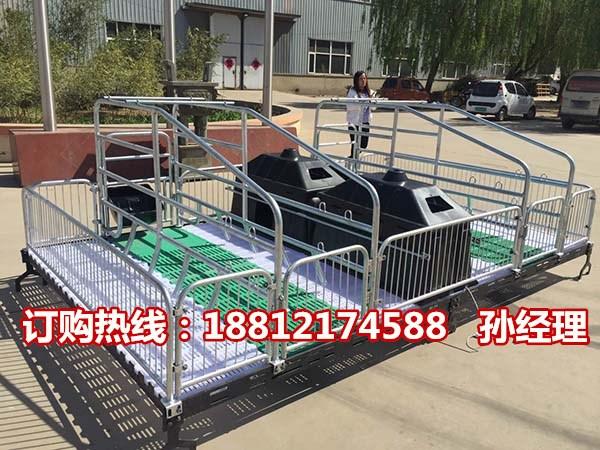 养猪设备生产批发 母猪产床价格  猪用分娩栏尺寸