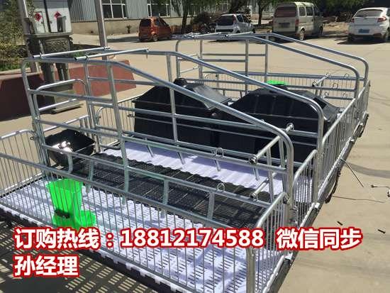 养猪设备出售  猪用分娩栏价格 母猪产床价格宏基