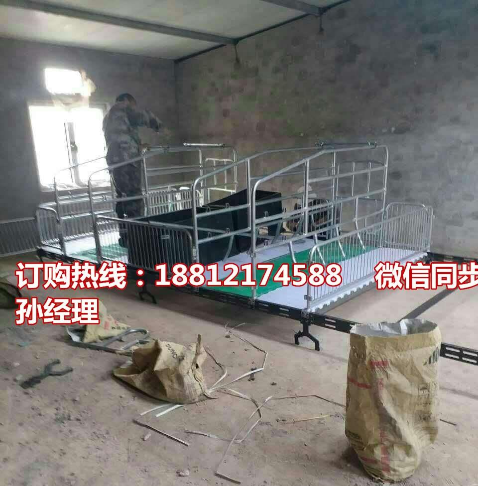 供应母猪分娩栏尺寸齐全 养猪设备批发