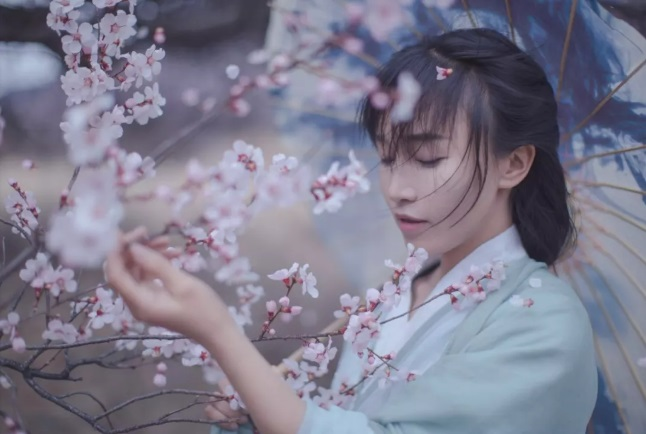 """""""李子柒-2017第一网红"""""""