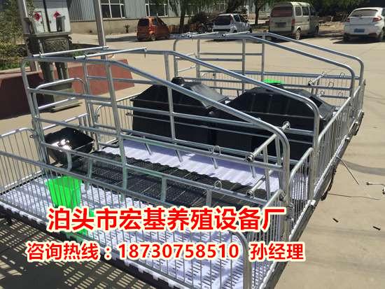 猪产仔栏尺寸合理 母猪产床价格  养猪设备出售