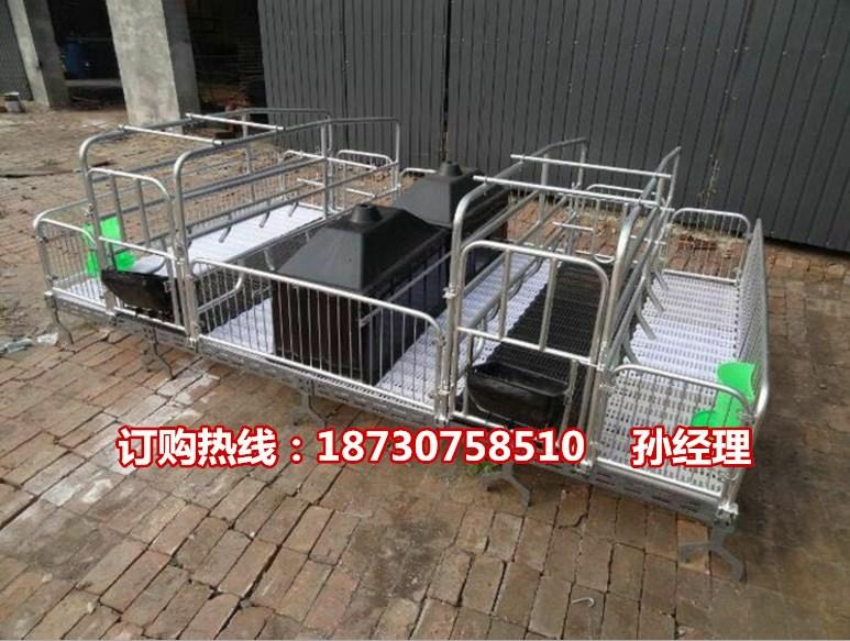 厂家直销母猪产床尺寸 猪产床出售 高培产仔栏价格