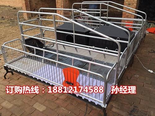 养猪户常用产床多少钱一套  猪用产仔栏尺寸  母猪分娩栏批发