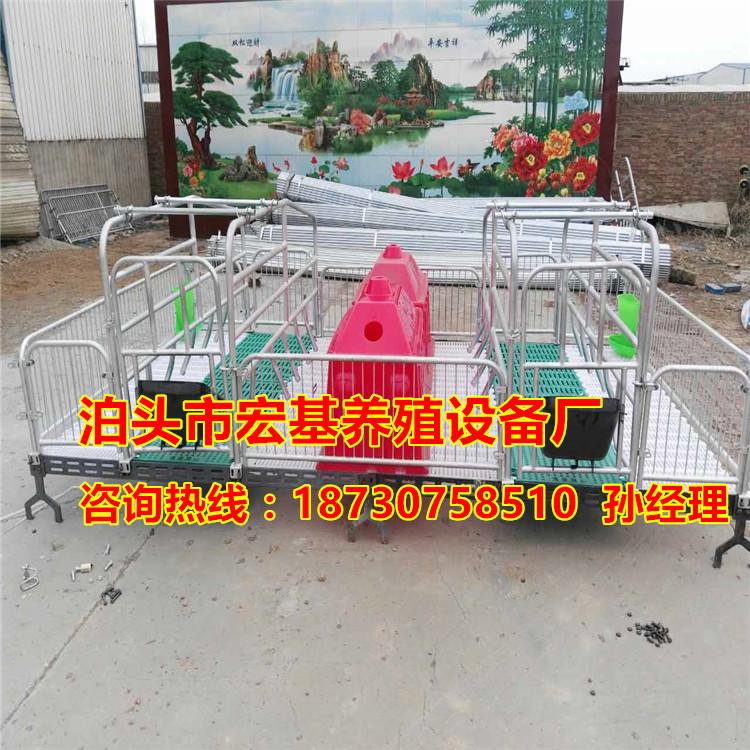 猪用产床一套多少钱  高培猪用产仔栏尺寸齐全 养猪设备批发