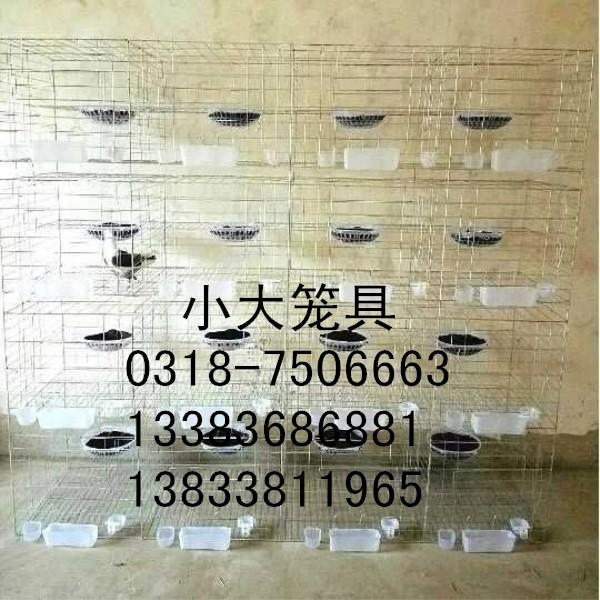 售鸽子笼狐狸笼鹌鹑笼兔子笼运输笼宠物笼蛋鸡笼雏鸡笼肉鸡笼貉笼