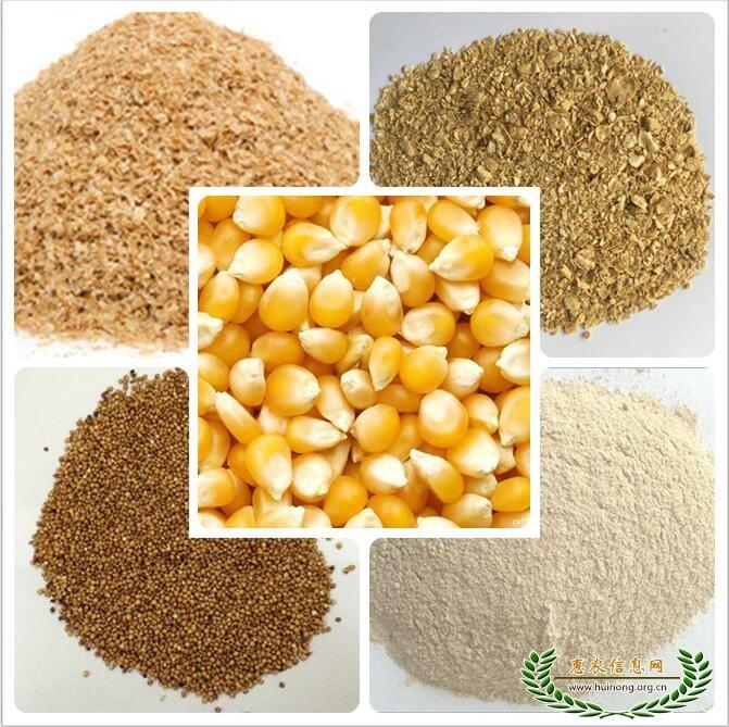惠侬饲料厂求购玉米大豆高粱米糠等饲料原料