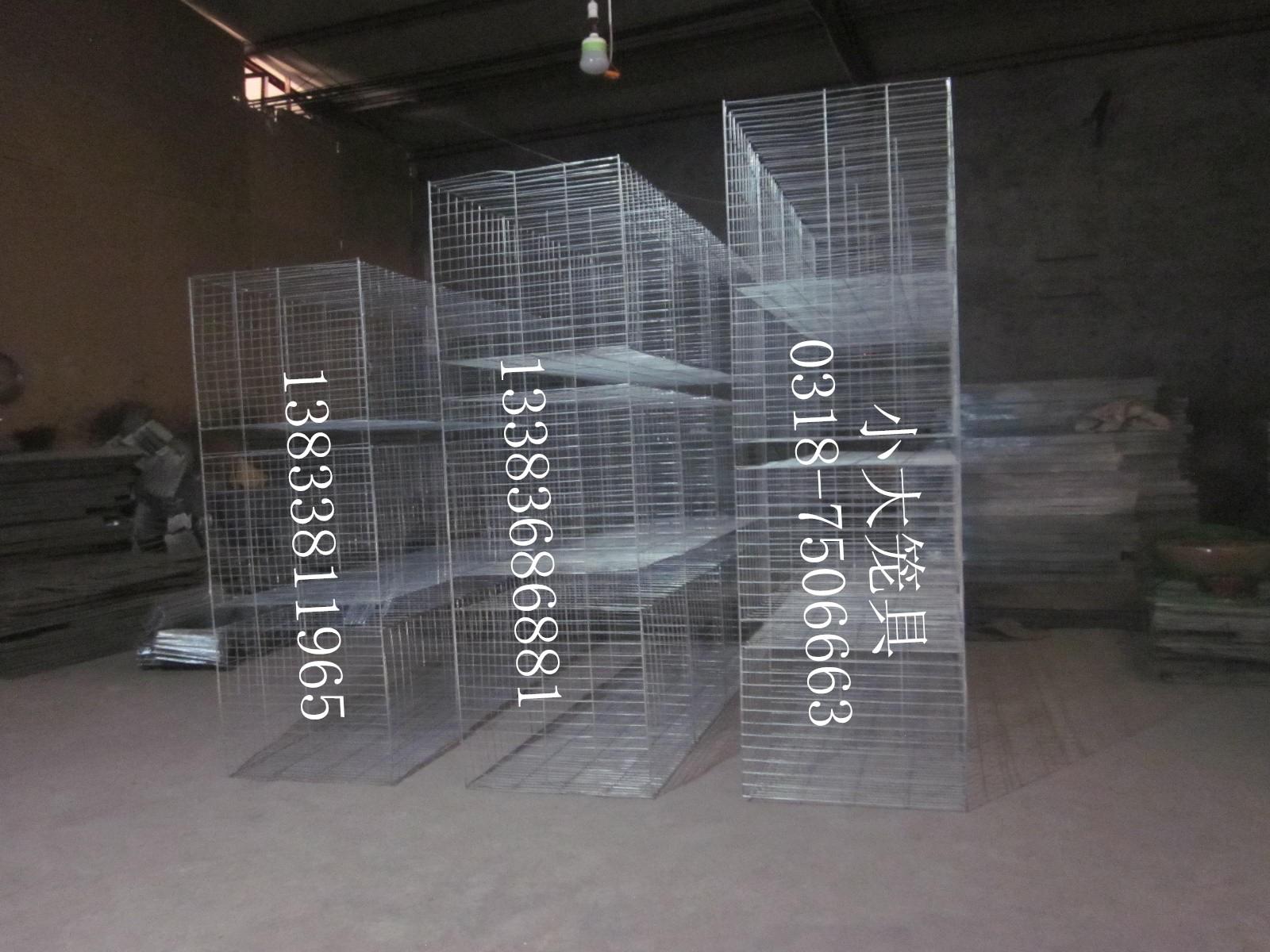 鸽笼子兔笼子鸡笼子狐狸笼鹌鹑笼运输笼鸟笼子狗笼子鸽子笼兔子笼