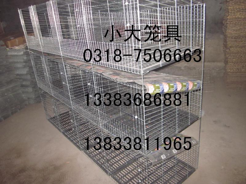 母兔笼肉兔笼鸽子笼狐狸笼鹌鹑笼兔子笼蛋鸡笼宠物笼运输笼好鸽笼