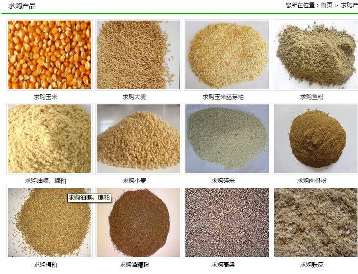 现款需求玉米大豆高粱油糠菜粕等