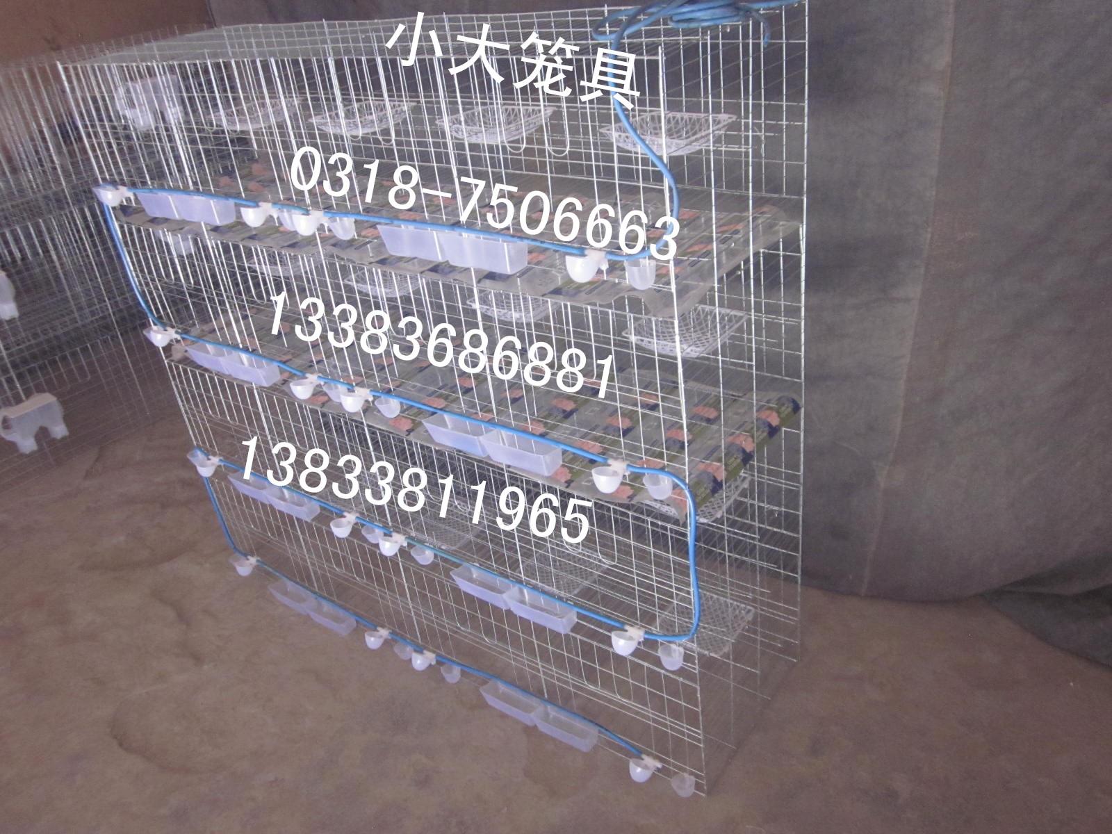 鸽子笼兔子笼宠物笼运输笼狐狸笼鹌鹑笼貉子笼鸽笼子兔笼子鸡笼子