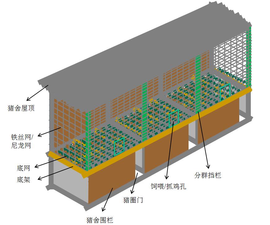 猪舍养鸡网上平养改造局部横向示意图