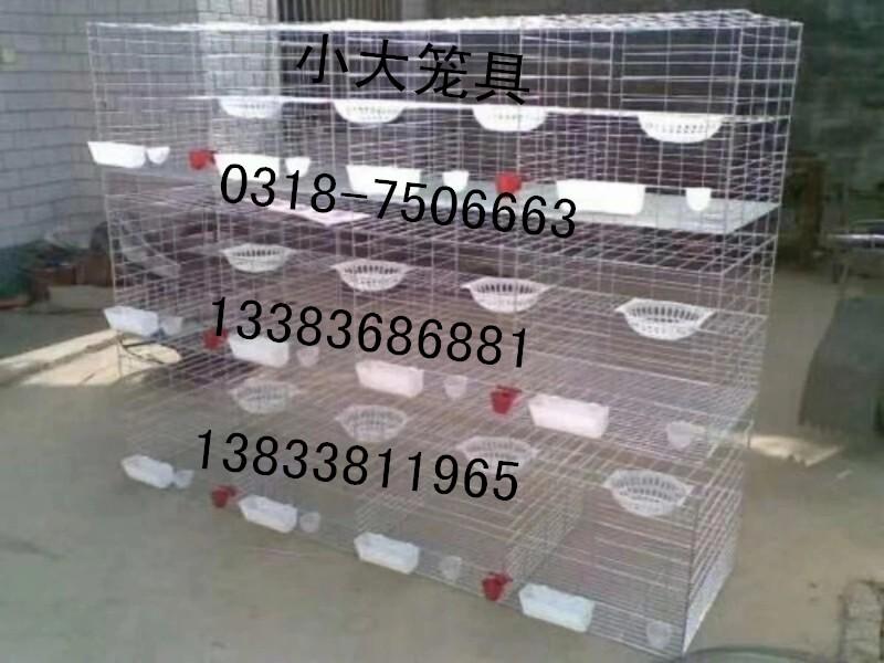出售兔子笼 鸽子笼 鹌鹑笼 鹧鸪笼 运输笼 鸟笼 狗笼 猫笼 饲料盒 饮水器 接粪板